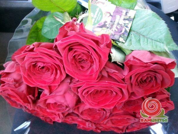 20 ноября 2014, Краснодар. Букет из 21 красной розы