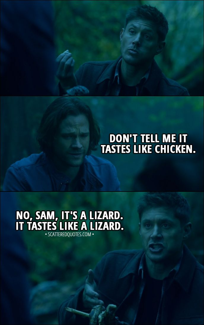 Quote from Supernatural 13x10 │ Sam Winchester: Don't tell me it tastes like chicken. Dean Winchester: No, Sam, it's a lizard. It tastes like a lizard. │ #Supernatural #Quotes