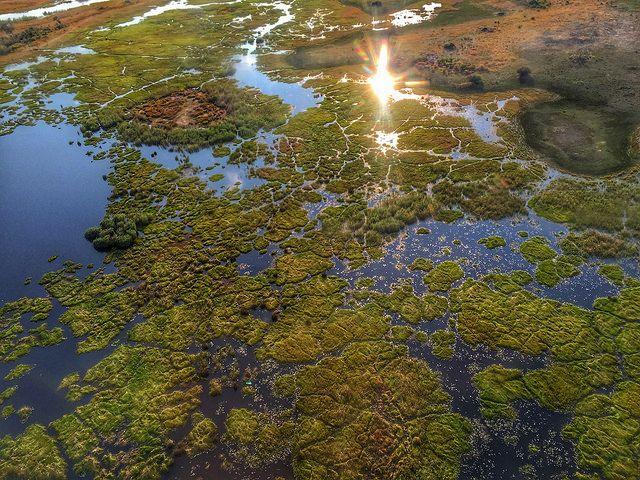 Vuelo fotográfico: El Delta del Okavango a vista de avioneta con elrincondesele