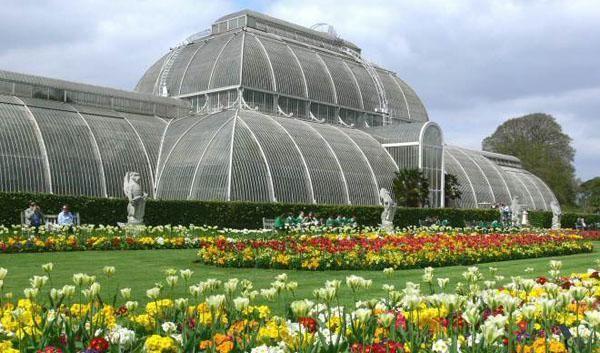 Biglietti: http://www.visitbritainshop.com/italia/attrazioni/attrazioni-a-londra/product/royal-botanic-gardens-kew.html?utm_source=vivi_londra_it&utm_medium=affiliate&utm_content=royal-botanic-gardens-kew&utm_campaign=vivi_londra_it Inclusa nel London Pass: www.vivilondra.it/LondonPass.html  I Royal Botanic Gardens, conosciuti anche come Kew Gardens, sono tra i più celebri a livello internazionale, richiamando ogni giorno un quantitativo sorprendente di visitatori.