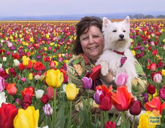 A great day at the Oregon Tulip Festival #MillionPets