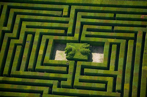 Maze at Hatfield House    Picture: JASONHAWKES.COM