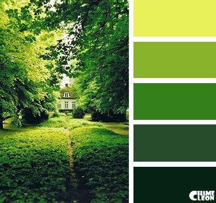 Harmonie vert forêt  I Design I Couleur I Inspiration I Camaïeu I Peinture I