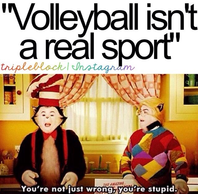 Seriously tho, hate when people say volleyball isn't a real sour