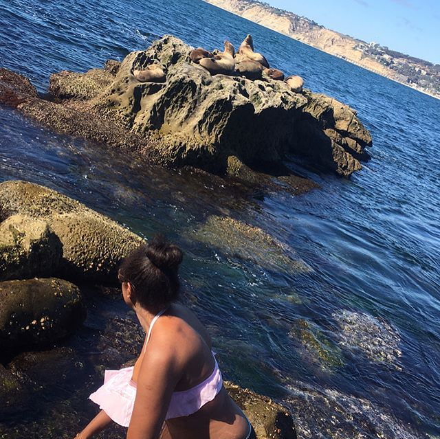 """Wading in the sea lions """"den"""" waters #lajolla #sealion #den #water #bay #ocean #sandiego #california #surf #pacificbeach #sand #wind #ocean #beach #fun #beautiful #sun #fashion #pink #girl #smile #pretty #nature #cliff #rocks #brown #blue #lajollalocals #sandiegoconnection #sdlocals - posted by Mags  https://www.instagram.com/mags_ha. See more post on La Jolla at http://LaJollaLocals.com"""