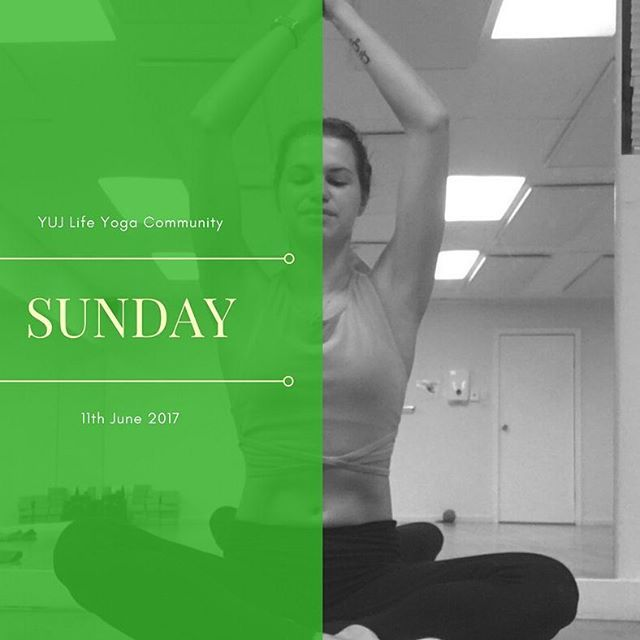 Sunday8am wake up to heated vinyasa flow yum!4pm walk into evening with heated vinyasa flow plus a bit more vigour in it from Ryu 😀Walk ins welcome 💜💜 #yujlifeyoga #yujlife #glenosmondroadyoga #glenosmondroad #adelaideyogastudio