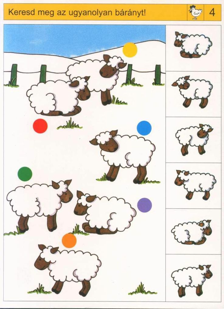 * Waar is het schaapje! 1-2