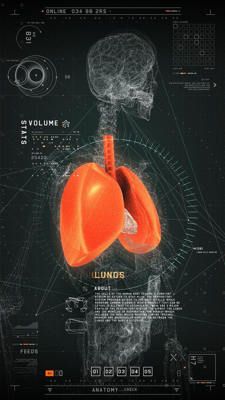 Interaktives Medizinisches Userinterface