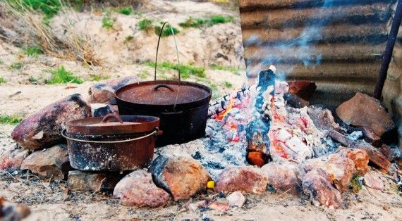 How to survive the outback | Tip: Learn to love bush tucker #tips #outback #travel