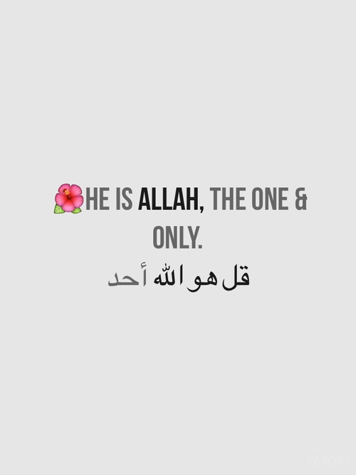 """ALLAH is ONE, not two, three or more. Just ONE. """"verily, your Allah is one"""" [Quran 37:4]"""