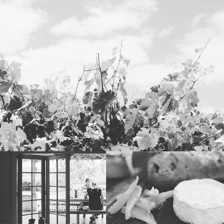 With most of the picking done, it's time for some R&R.   Our local produce platters, matched with wine and sunshine, is the perfect combo.   See you in the Tasting Room.   10.00-6.00pm daily.   #vintage2016 #msvwine