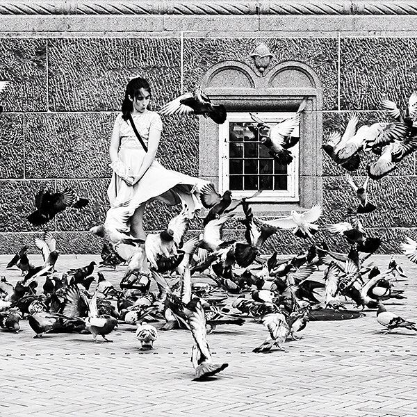 The Marilyn Effect L1051722  .  #flyingskirt #updraft #whoosh #pigeons #ooooooh #marilyn #dressblowing #thesevenyearitch #marilynmonroe #københavn #copenhagen  .  .  A young girl feeds the pigeons in front of Københavns Rådhus (Copenhagen City Hall)  .  .  #thethingswedo #photooftheday #bw_photooftheday #bnw #blackandwhite #monochrome #streetphotography #streetphoto_bw #leica #leicalove #notallwhowanderarelost #whereami  ----------