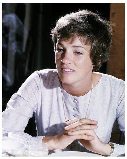 Julie Andrews: 25+ Best Ideas About Julie Andrews On Pinterest