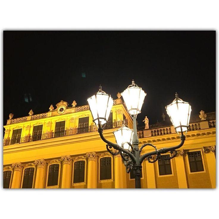 schönbrunn #wien #vienna #österreich #austria #igers #igersvienna #igersaustria #discoveraustria #igersoftheday #ig_vienna #picoftheday #instagood #photooftheday #instagram