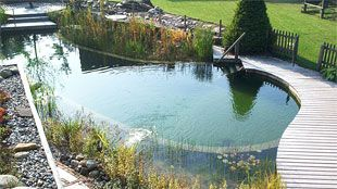 BIOTOP Natural Pools. Instead of a chemical laden traditional pool, Natural Pools are a living ecosystem that cleans itself. Naturally.