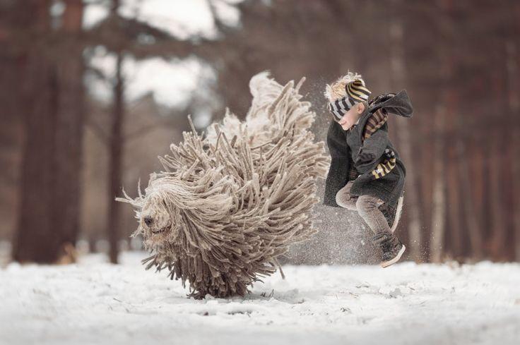 Arthur und Zeus, der Komondor, ein ungarischer Hirtenhund.