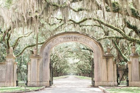 Wormsloe Plantation | Savannah, Georgia >> A historic site mostly owned by the state which welcomes visitors to explore an oak-lined drive, museum and walking trails.