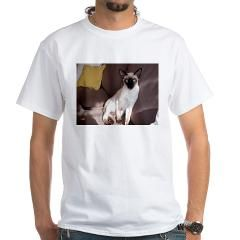 siamese sitting 3 T-Shirt> Siamese> The Kattery