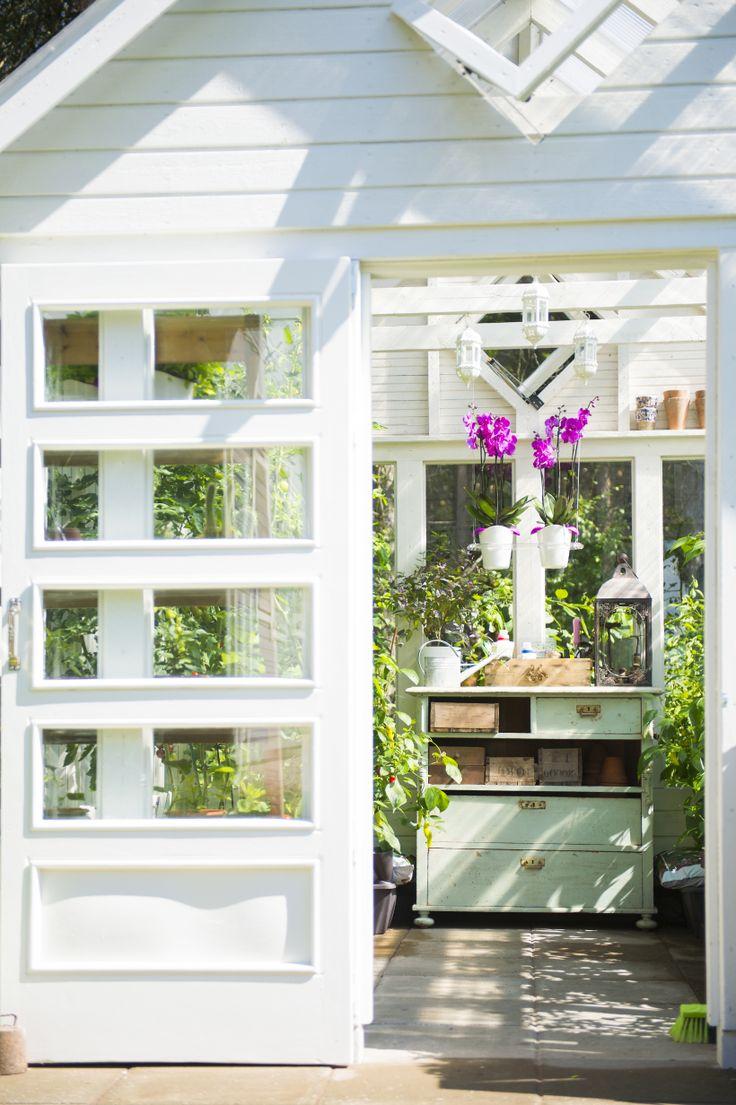 Hanging rack and Orchid pots in greenhouse. Biolan Ilo growing set. http://www.biolan.fi/suomi/puutarhaharrastajat/huonekasvituotteet/ilo-kasvatussarja