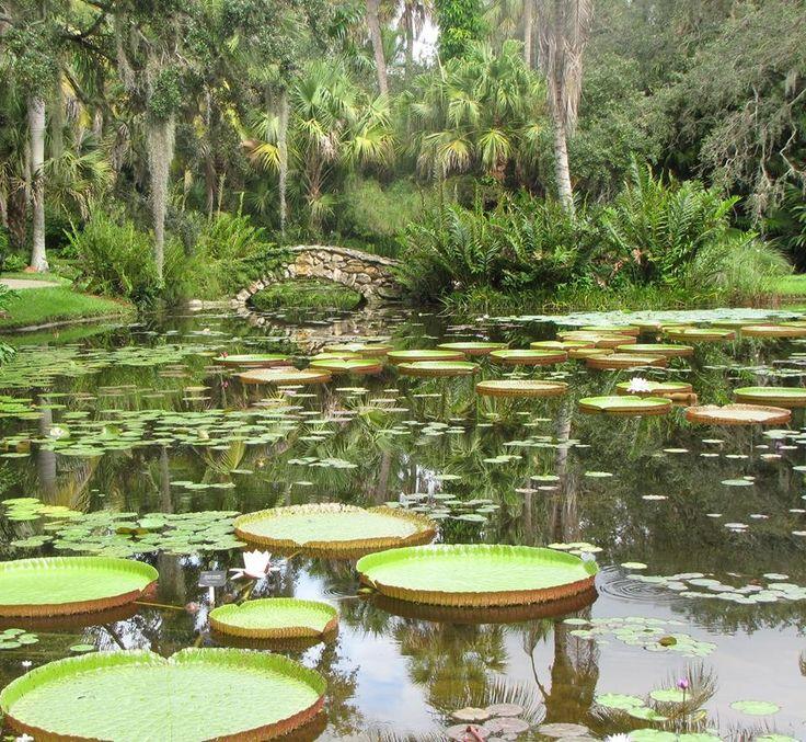 Mckee botanical gardens vero beach fl mckee gardens - Mckee botanical gardens vero beach ...