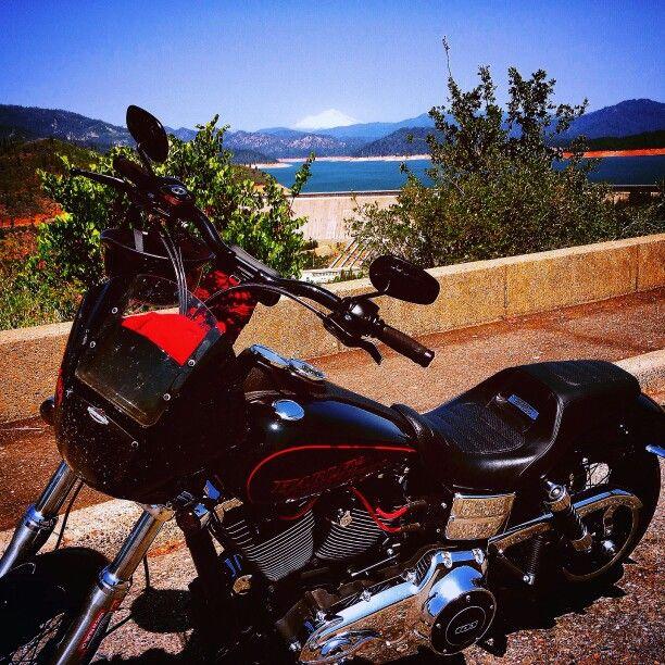Best 25 dyna low rider ideas on pinterest harley for Shasta motors redding california