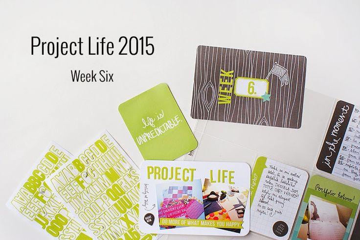 Amca Design: PROJECT LIFE - Year 2015 Week six