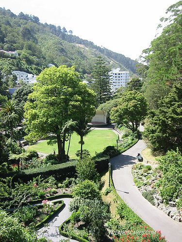 NZ Landscape Photos. Wellington Botanical Gardens. Remember walking down here and heading to the tropical plant shed to get warm.