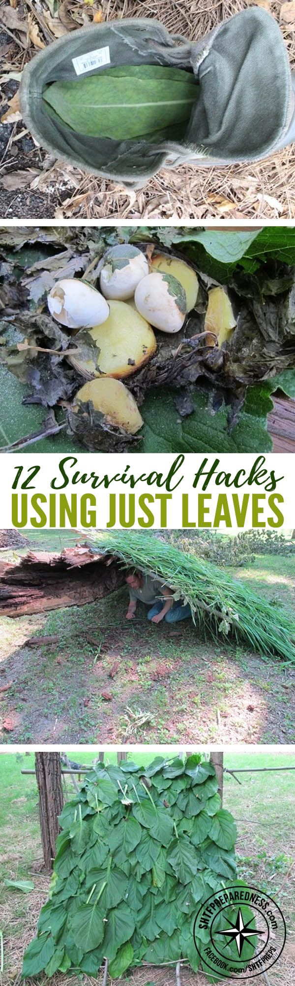 12 Survival Hacks Using Just Leaves — When in a survival situation pretty much anything and everything can be upcycled into something that can aide you in surviving. Over at willowhavenoutdoor.com Creek shows us 12 survival hacks that we can use just by using leaves.