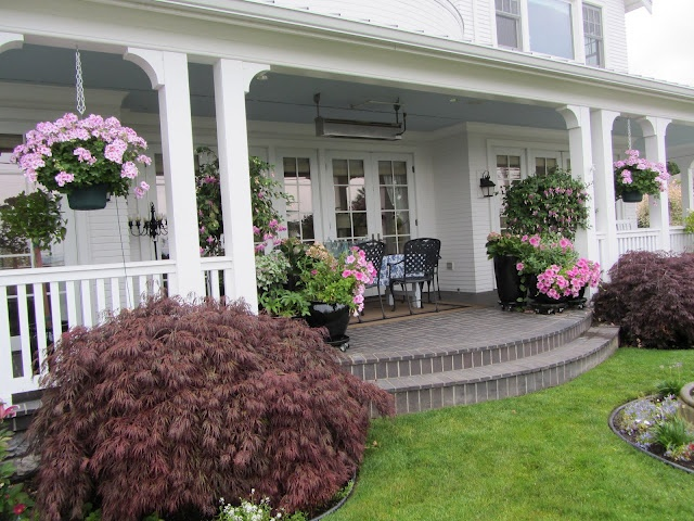 ..: Gardens Porches, Beautiful Geraniums Pots, Beautiful Porches,  Terraces, Back Porches, Pink Geraniums, Geraniumslov Porches, Wraps Around Porches, Front Porches