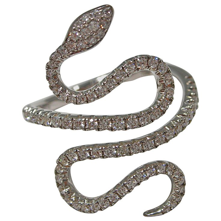 87 best images about black snake on