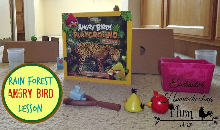 Rainforest Angry Bird Lesson Angry Birds fun and a book ... what's not to love?!