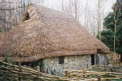 thatch roof and wattle fence...Sussex, England...