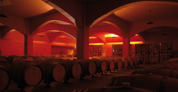 Cretan wine... the true love of Cretan people... #crete #wine