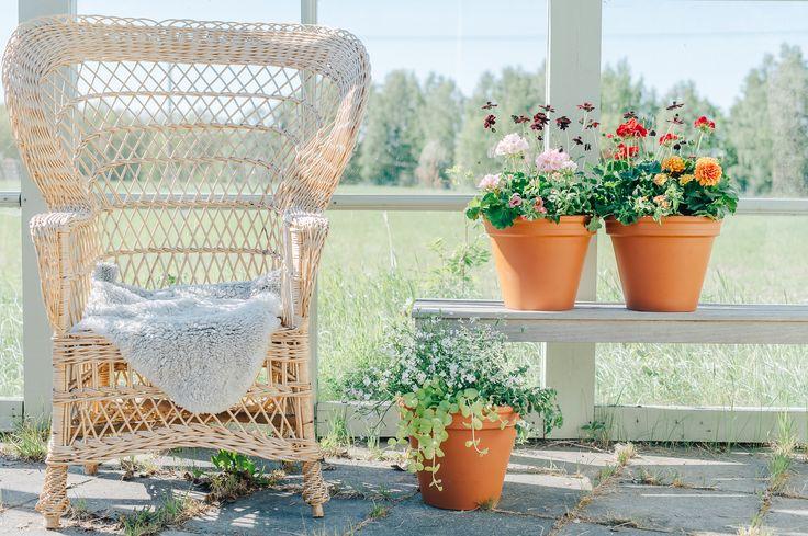 En underbar sommarplantering som består av 5 olika växter i rosa färger. Perfekt överraskning som håller länge och sprider sommarglädje på altan eller balkong.