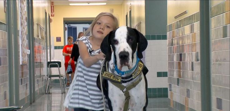 VIDEO: The Special Bond Between a Young Girl With Rare Genetic Disorder and Her Service Dog