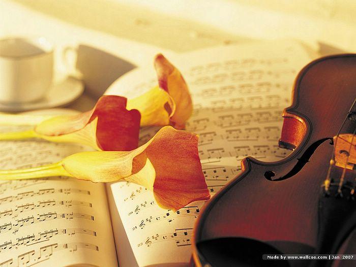 Flower Arrangement,  Floral Art Photography  - Romantic Scene : Flowers, violin and music score  Picture   19