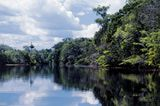 The Amazon River watershed is one of the world's largest - it includes most of northern South America.