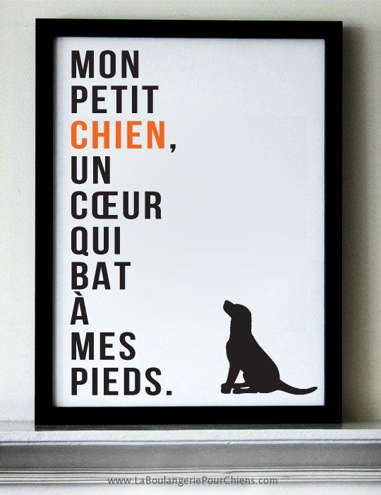 Mon petit chien, un cœur qui bat à mes pieds. www.LaBoulangeriePourChiens.com #citation #citationschien