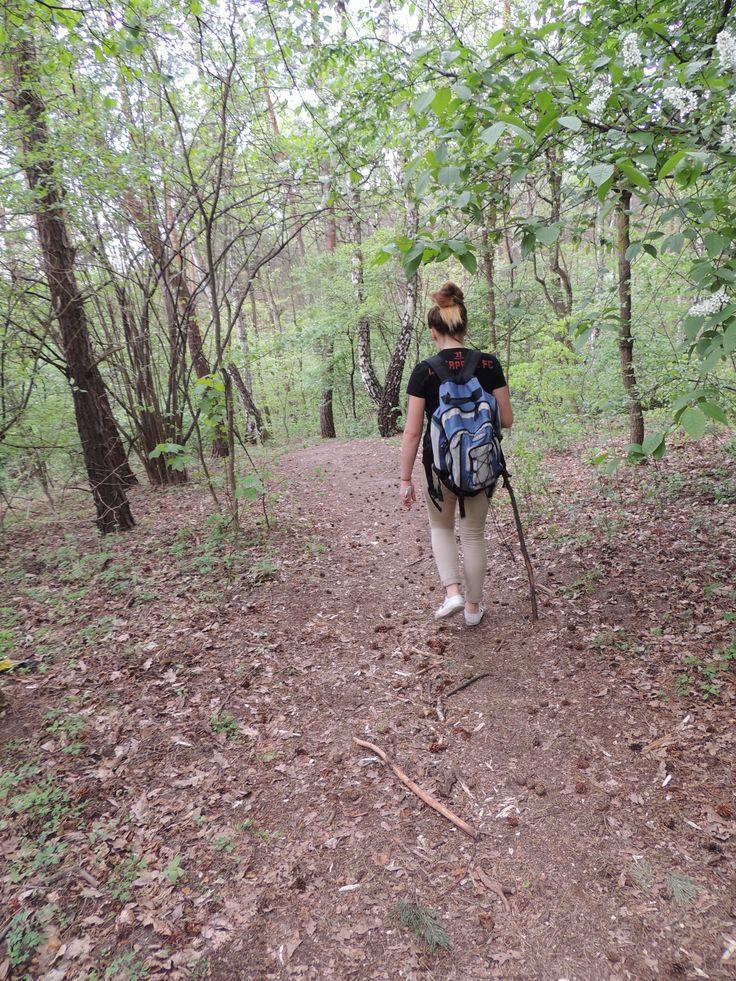 Rezerwat przyrody Skołczanka