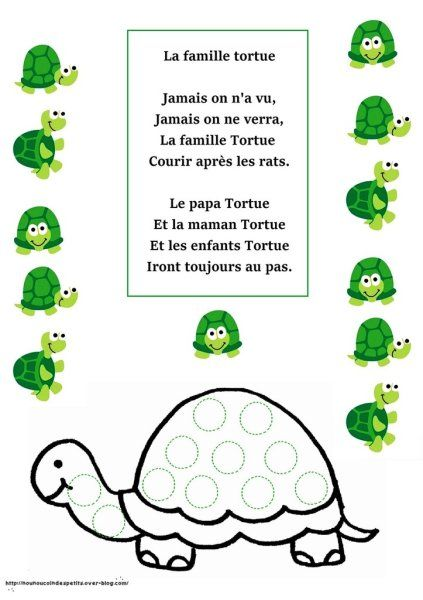 ".. Animaux .. "" la famille tortue """