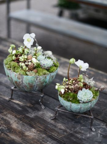 Tiny Planters: Do It Yourself! - DIY Recyclist