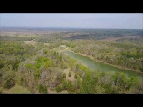 Mississippi Deer & Turkey hunting land for sale, Thunderbird Tract