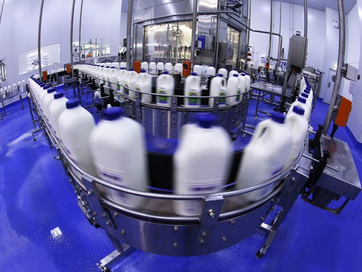 Alternative milk company a2 Milk has emerged from the fringe to become the sharemarket's undisputed darling. - The Country
