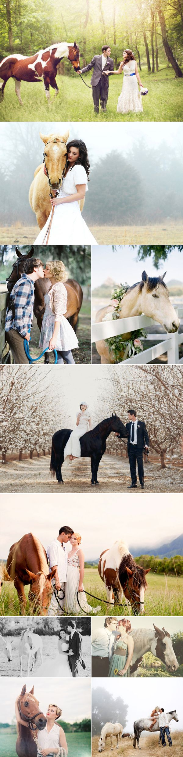 I like the first one, except with positions reversed for me and Eric. I also like the one with the horse grazing, and the couple beside him. I think we could recreate that one with Cassie! She loves to eat!