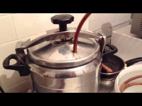 distillation de fleur de géranium تقطير العطرشية بالكوكوت - YouTube