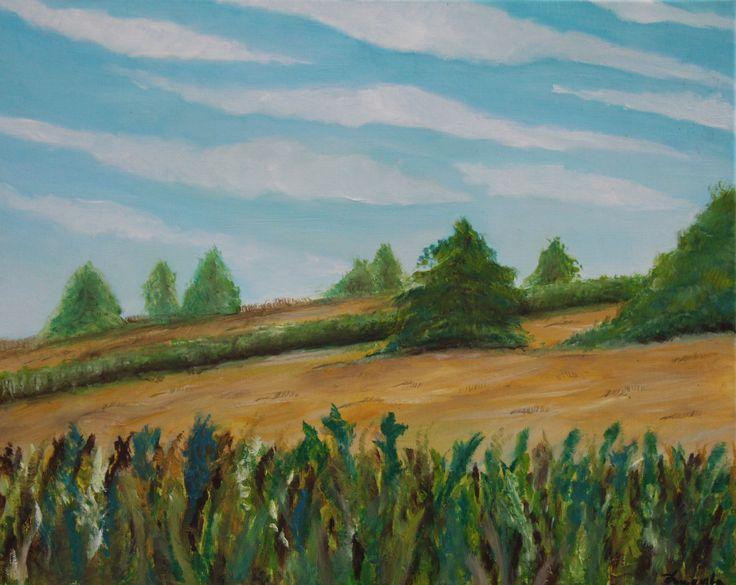 Pole w Blizanowie ( 50x40 , Olejna)
