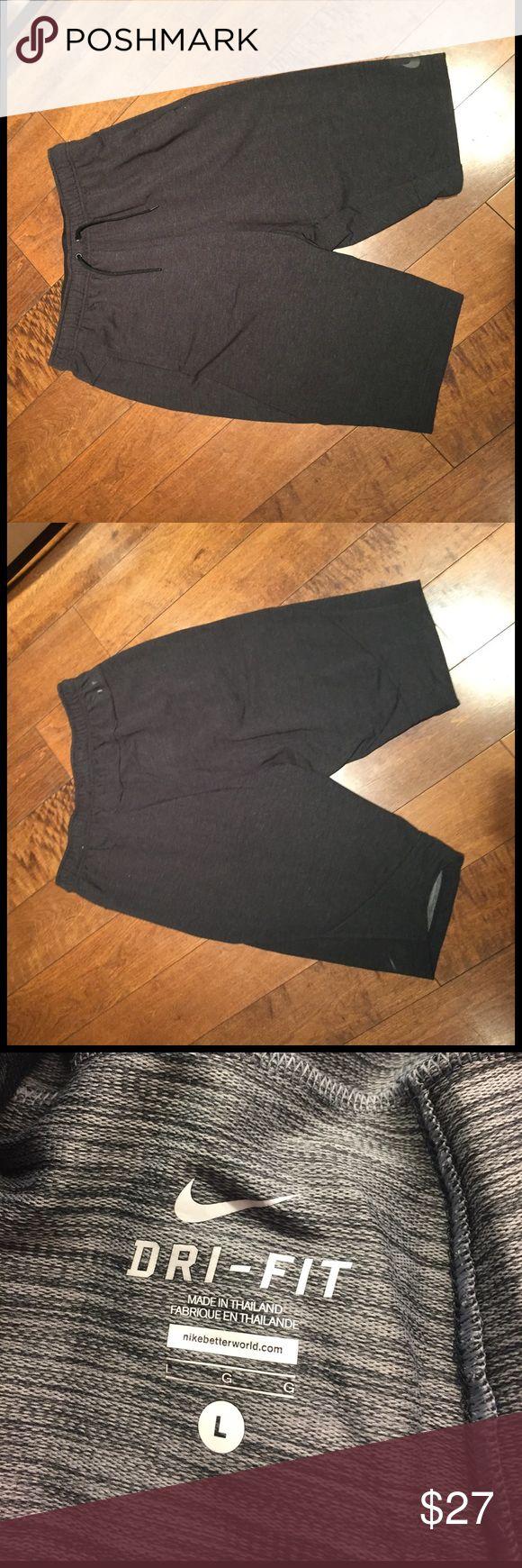 Men's athletic shorts size L Nike men's shorts. Brand new Nike Shorts