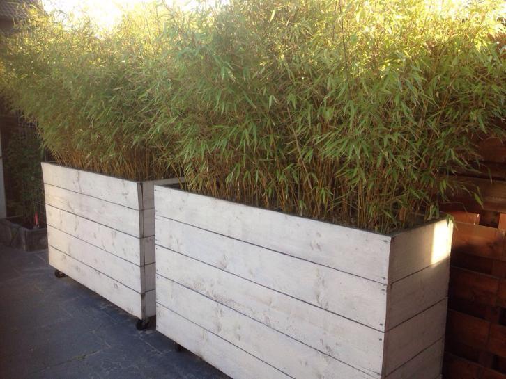 Bamboe terras afscheiding , in steigerhouten plantenbakken!