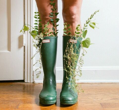 Plants coming out of the boots