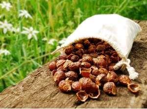 Orzechy piorące - zdrowa i naturalna alternatywa cz. I